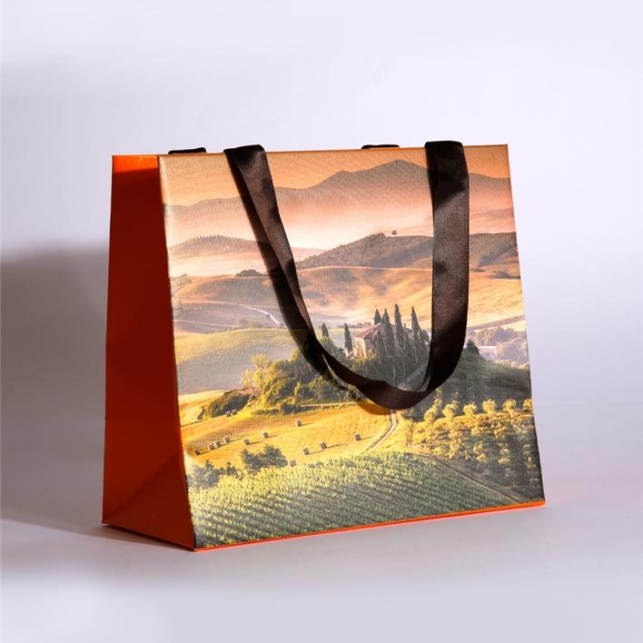 Luxury paper bags -  MGS0136